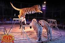 Představení českého Cirkusu Aleš