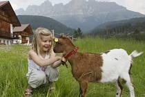 Jižní Tyrolsko: Dovolená pro každé roční období