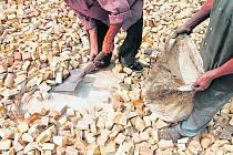 Biomasa - ilustrační foto