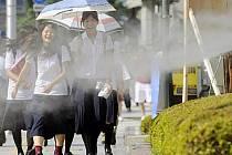 Vedra v Japonsku. Ilustrační foto