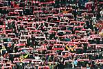 Fanoušci fotbalistů Slavie