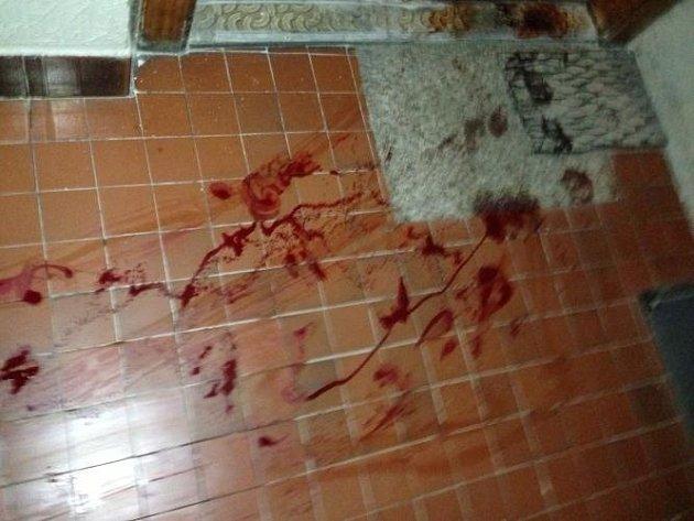 Sebevraha policisté vystopovali podle krve.