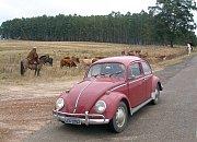Volkswagen vyráběl ikonický model Brouk v Brazílii i poté, co jeho výroba v Evropě skončila.