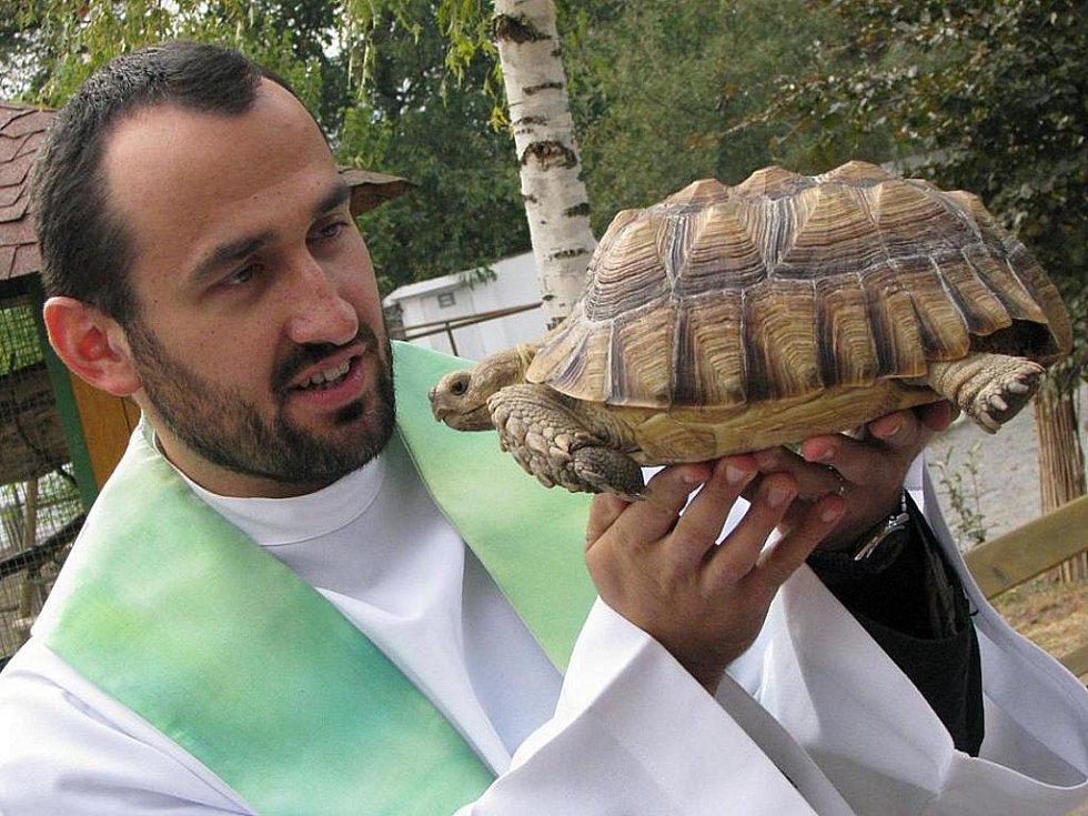 """V chlebské zoo na Nymbursku se rozhodli, že na svátek svatého Františka z Assisi pozvou faráře, aby jim dal požehnání. """"Svatý František je patronem přírody a všech živočichů, v dnešní době také ekologie,"""" vysvětlil nymburský farář Petr Kováč."""