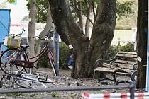 Nejméně jeden člověk zahynul a další tři byli zraněni při několika současných explozích na různých místech parku v japonském městě Ucunomija.