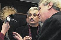 PŘÁTELÉ A POSLANCI. Šála, knír a kudrnaté vlasy, to byly tři známé znaky významné osobnosti Pavla Dostála. Na snímku z roku 2002 je s Milošem Zemanem v ZOO ve Dvoře Králové.