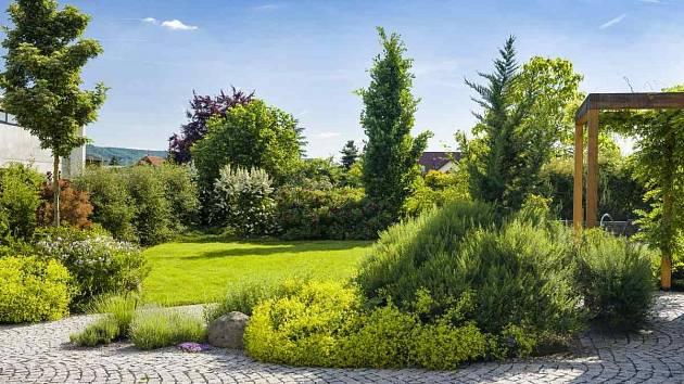 zahrada, ilustrační foto