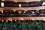 Barcelonská opera vyměnila diváky za květiny. Zahrála jim Pucciniho koncert s názvem Chryzantéma