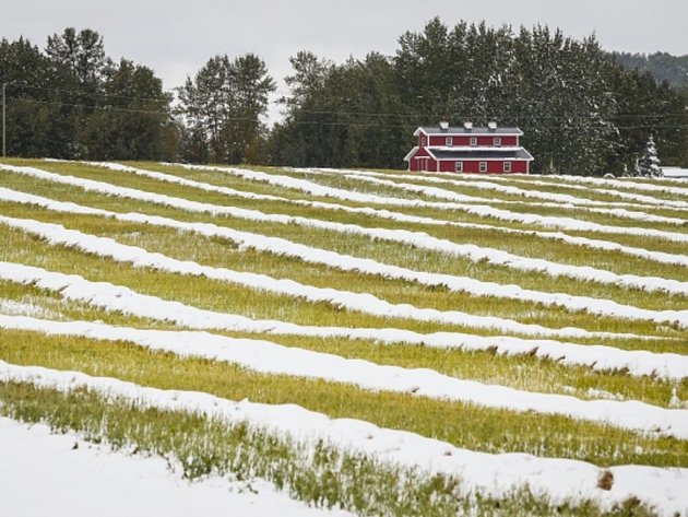 Kanadu zasáhly sněhové bouře nezvykle brzy.