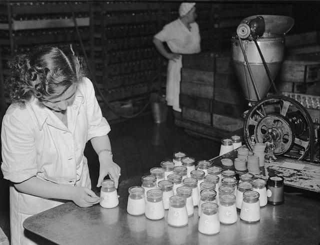 V Radlické mlékárně se na lahvičky s jogurtem lepí holubičky míru - k Světovému týdne mládeže.