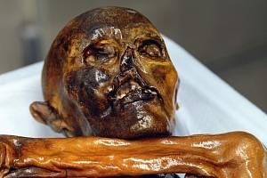 Mumie 5000 let starého muže nalezená v Ötztalských Alpách a proslavená jako Ötzi