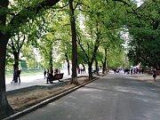 """Příjemnou vzpomínkou """"na Čechy"""" je také stoletá lipová promenáda na břehu řeky Už"""