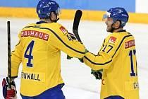 Hokejisté Švédska se radují z gólu.