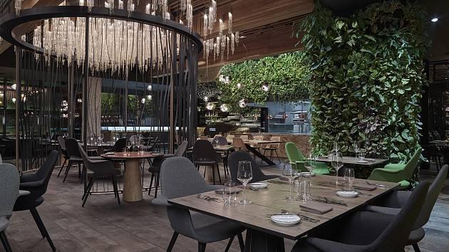 Vítězná restaurace Entrée v Olomouci