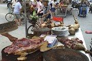 Festival psího masa v Číně