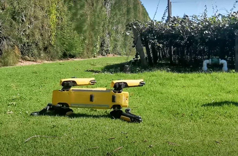 Roboty mohou chodit, létat nebo se třeba válet