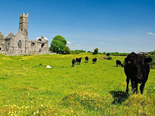 """Irsko - """"zelený ostrov"""""""