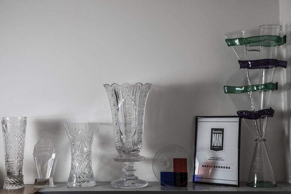 Několik málo vybraných trofejí v bytě Davida Svobody.