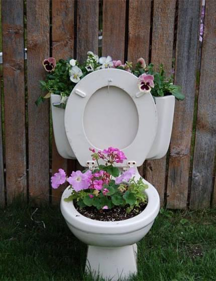 Je libo květináč ze záchodové mísy?