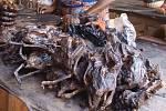 K rozšíření horečky Lassa pravděpodobně přispěla i veřejná tržiště s nedostatečnou hygienou