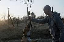 Můj pes Killer představuje tu nejlepší čistou filmařinu, jakou si dokážeme představit. Je to přímý, odvážný a ohromujícím způsobem silný film, který přináší osvětlující pohled na netoleranci velmi lidským způsobem. Takto odůvodnila porota vítězství.
