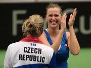 Radost. Petra Kvitová (vpravo) a Karolína Plíšková po vyhraném semifinále Fed Cupu proti Francii.