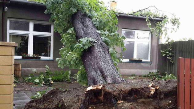 Silné bouřky se v neděli odpoledne přesunuly na Olomoucko