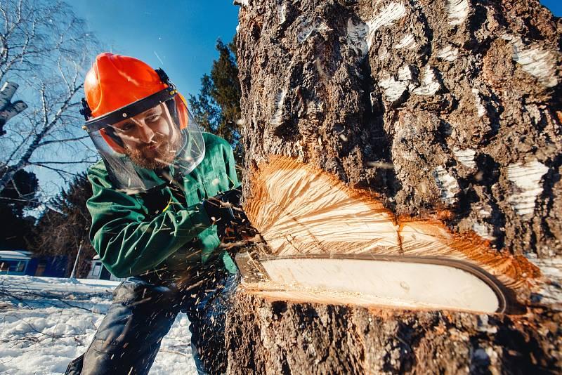 Pokud se rozhodnete pro zpracování větších kusů dřeva, jako jsou třeba klády nebo kulatina, přímo vlese, bude správným pomocníkem výkonnější benzinová řetězová pila.
