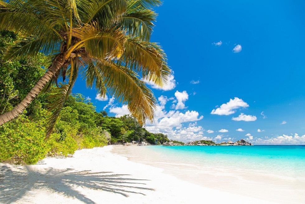 O koupi ostrovů vyvolanou koronavirem je velký zájem.