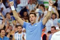 Juan Martín del Potro má lví podíl na premiérovém triumfu Argentiny v Davis Cupu.