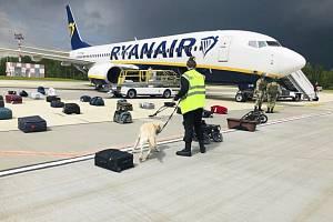 Pracovník letiště prověřuje zavazadla z letounu s registračním číslem SP-RSM, ve kterém cestoval běloruský novinář Raman Pratasevič.