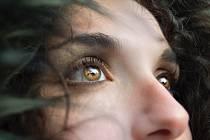 Čich nás upozorní na nebezpečí ještě dříve než zrak nebo sluch