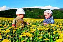 Počet alergiků stoupá a samotné alergické reakce jsou stále silnější.