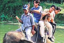 Ze hřbetu slona. Nás spolupracovník Vít Štěpánek, jehož cestu po Nepálu sledujeme, vyměnil vysoké hory za krásy národního parku Chitwan.