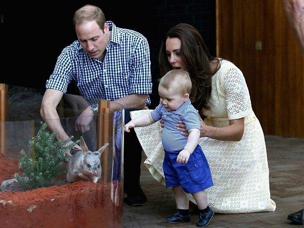 Princ George navštívil s rodiči ZOO.