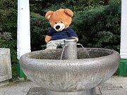 Odpočinek u studánky. Hugo je i na podzim do půli těla nahý. Holt medvěd.