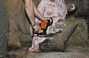 Řezání nosorožčích rohů