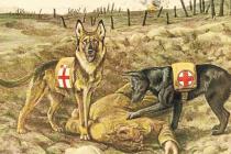 OCHRÁNCI. Němečtí ovčáci při práci v zákopech.