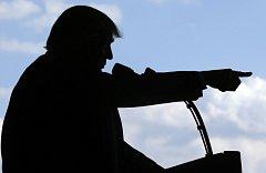 Donald Trump, silueta