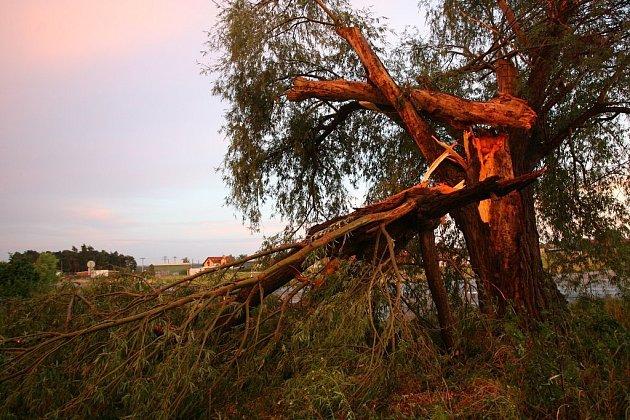 Silné bouře zasáhly území České republiky. Na řadě míst dlouhou dobu nešel elektrický proudu. Hasiči se potýkali s popadanými stromy a lokálními záplavami.