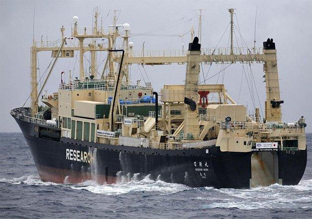 Zástupci Greenpeace oznámili, že se jim díky lodi Esperanze podařilo zabránit japonským velrybářům v ulovení nejméně 100 kusů těchto vzácných kytovců.