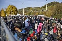 """Bavorsko stále hlasitěji kritizuje """"bezohledné chování"""" sousedního Rakouska, které se prý snaží migranty dostat co nejrychleji ze svého území bez ohledu na možnosti svého německého souseda."""