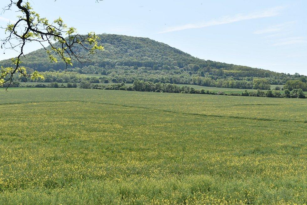 Ze samotného pole a bezprostředního okolí není obří obraz patrný, na tomto snímku o něm svědčí barevně odlišné pruhy