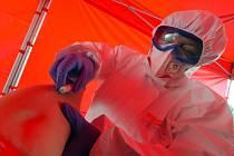 Odběr na testování nákazy koronavirem - ilustrační foto