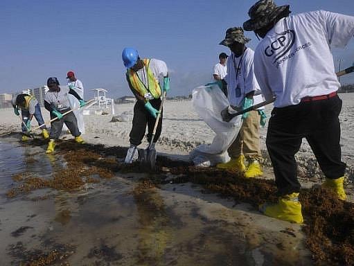 Čištění pobřeží a moře od ropy unikající z poškozeného vrtu v Mexickém zálivu bude zřejmě trvat do podzimu, možná déle.