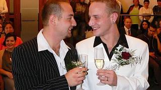Aktivisté za práva homosexuálů připsali Spitzerovi k dobru, že odstranil homosexualitu ze seznamu duševních poruch.