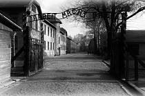 Německý nacistický koncentrační a vyhlazovací tábor na území okupovaného Polska; navštívily jej 2 miliony lidí