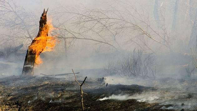 Oheň na Dálném východě se vymyká kontrole. Živí jej hojnost dřeva a nebývale teplé počasí (ilustrační snímek).