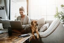 Práce z domova v době koronaviru změnila zvyky řady lidí. Ti nyní mají problémy začlenit se zpět do pracovního rytmu.