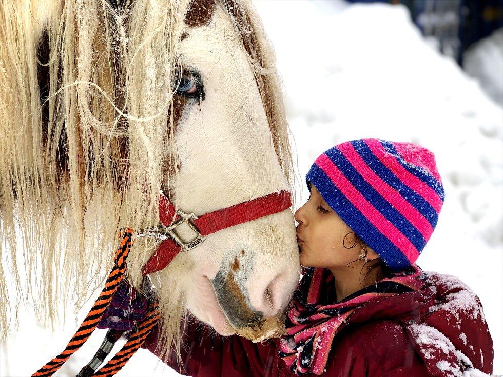 Dcera  Alice Janstové s koněm